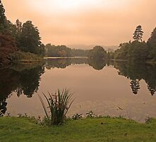 Peach Sky at Great Witley by CreativeEm