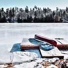On frozen pond - Gatineau, Québèc by Poete100