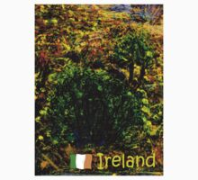 jGibney Ireland 1999 Kerry Lake District Ireland The MUSEUM Red Bubble Gifts by TheMUSEUM