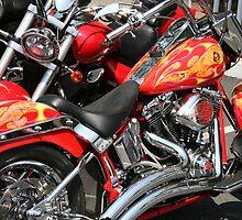 Hot Harleys by artsMark
