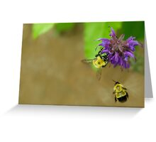 Beeing Together Greeting Card