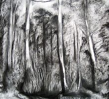 Bibbulmun Track by Lee Wilde
