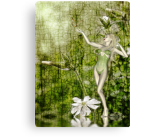 White Elf - John Edwards & Rose Canvas Print