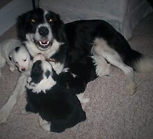 lilly has a puppie and lilly mum by lillylover