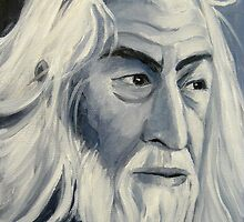 Gandalf by Annette Abolins