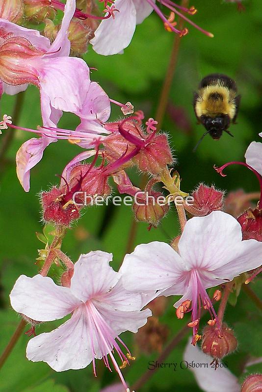 Hoover Bee 2 by ChereeCheree