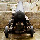 Cannon by HelenBanham