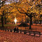 Central Park by Jay Mody