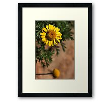 Hanging Over Framed Print