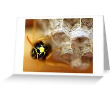 Wasp 2 Greeting Card