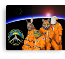 The Lylat Space Program Canvas Print