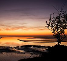 Golden Sunset by adampriley