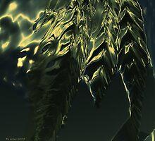 The Forest Dragon Grants Sanctuary by DLKeur