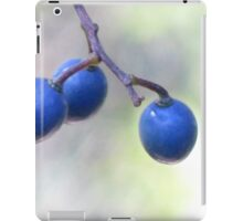 Three Blue Berries iPad Case/Skin