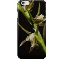 Scented Leek Orchid. iPhone Case/Skin
