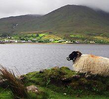 Irish Village of  Leenane. by Elmacca