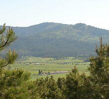 Mountain in Washington  by eltotton