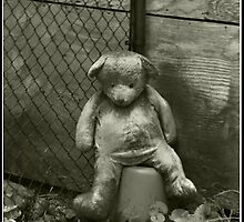 Neglected Teddy by Victoria DeMore