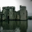 Transgression into Bodiam  by Larry Davis