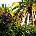 Paradise by Ena  Vyas