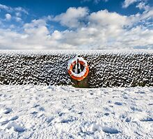 Can you drown in snow? by Nigel R Bell