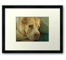 I'm Really NOT in the Mood Framed Print