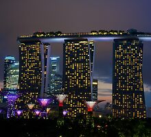 Singapore - Gardens by the Bay by tpixx