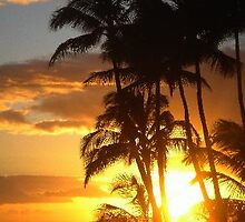 Hawaiian sunset from the Sheraton Hotel, usa by chord0