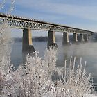Frosted Bridges by Nicole Cherewayko