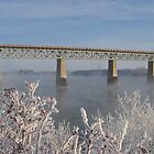Frosted Bridges 2 by Nicole Cherewayko