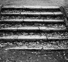 Stairs by Vladimir Gatara