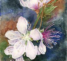 Peach Flowers by jadlart