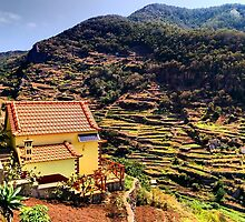 Old Farming Terraces, Madeira by Neurox
