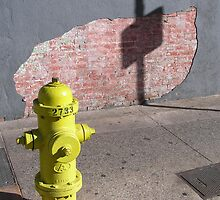 Honolulu Hydrant by Felicia Moore