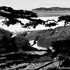 #406    The Beach At Carmel by MyInnereyeMike
