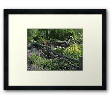Robison Herb Garden Framed Print