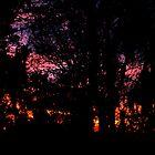 Fire in the Sky by Rebekah  McLeod