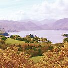 Derwent Water from Castle Head by Mishka Góra