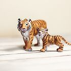 The Tigers by Debbra Obertanec