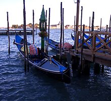 Venice lagoon and gondolas by SylviaCook