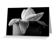 Gardenia in coffee cup Greeting Card