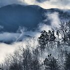 Beautiful Smoke 2 by Karen Stevens