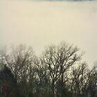 Beautiful Smoke 3 by Karen Stevens