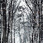 Snowy Road to Grandma's 2 by Karen Stevens