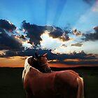 sunset by Gabriel Popa