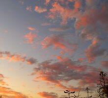 """""""A Dance Across The Sky"""" by Glenn McCarthy"""