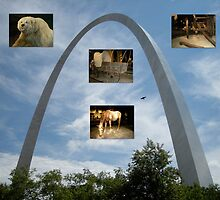 Exhibits under the Arch by Jim Caldwell