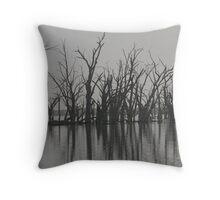 Wachtel Lagoon - Moorook Throw Pillow