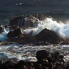 Rocky Shore  by dcdigital