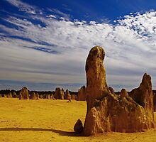 Nambung National Park by Jennifer and Paul Cave